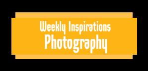 WGDHeaderWeeklyInspirationsPhotography-02